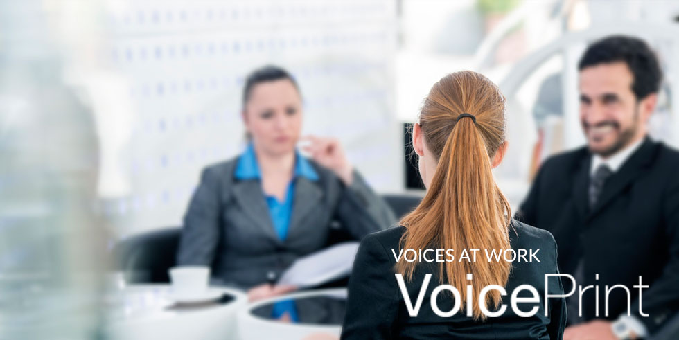 Voices at Work – The Professional Mediator