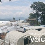 Voices at work - the emergency simulation manager