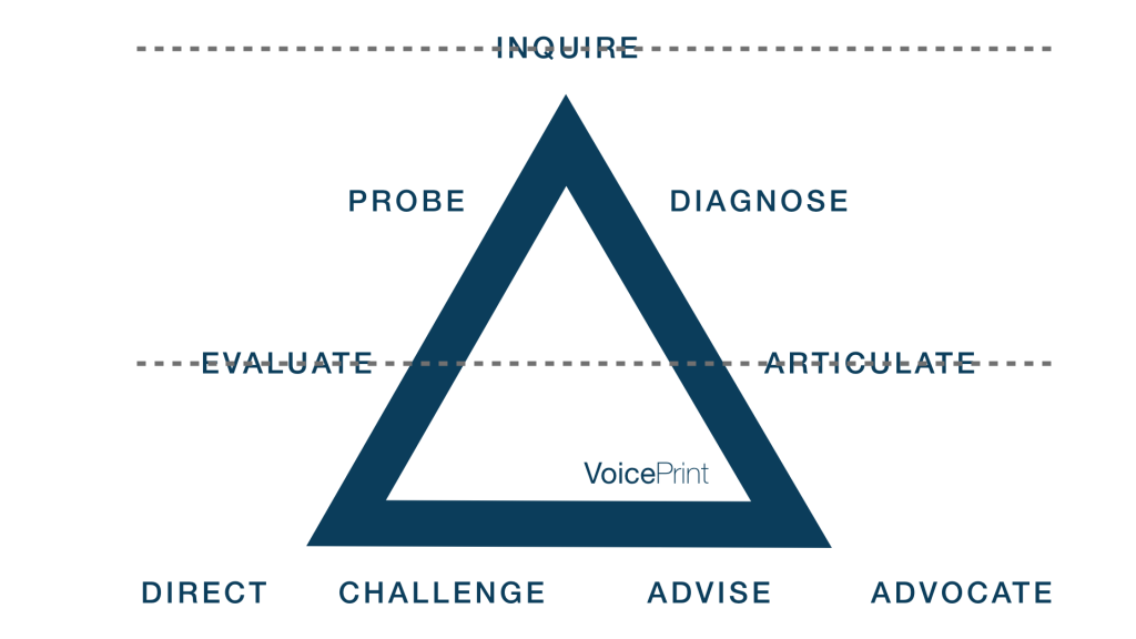 the VoicePrint model highlighting the tear points in team resourcefulness